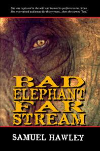 Bad-Elephant-Far-Stream
